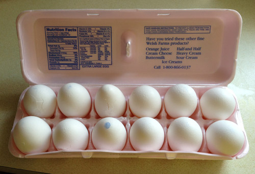 One dozen eggs in a styrofoam carton